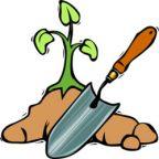 آشنایی با زمان کاشت سبزیجات سری ۱: