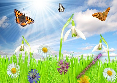 شعر کودکانه درباره بهار