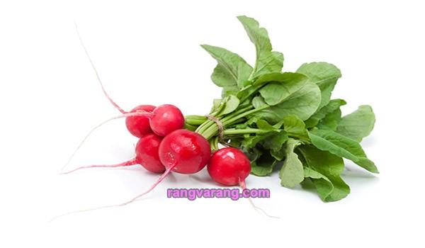 زمان کاشت سبزی خوردن - تربچه