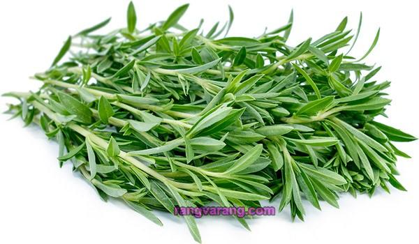 زمان کاشت سبزی خوردن - مرزه