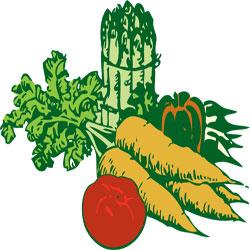 بهترین زمان کاشت انواع سبزیجات