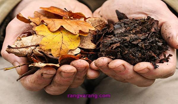 تولید خاک برگ