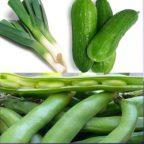 آشنایی با زمان کاشت سبزیجات سری ۵: