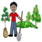 ۲۰ نکته مهم در احداث باغ: