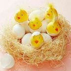 آموزش تخم مرغ رنگی جوجه ای: