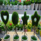 روش ساخت ماکت برای سبزه: