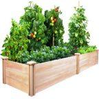 اصول کاشت و پرورش سبزی در خانه سری ۱: