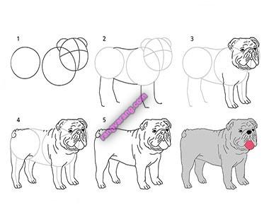 روش کشیدن نقاشی سگ برای کودکان