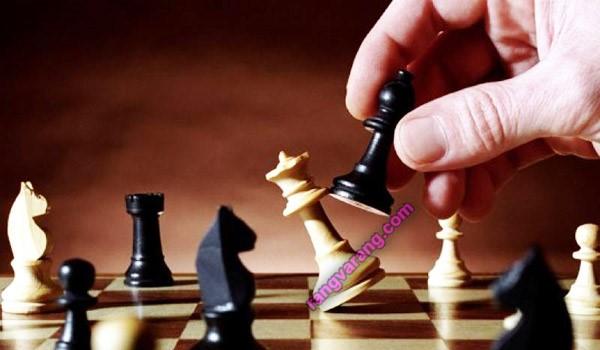 رشته های ورزشی- شطرنج