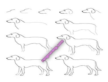 مدل نقاشی سگ برای کودکان