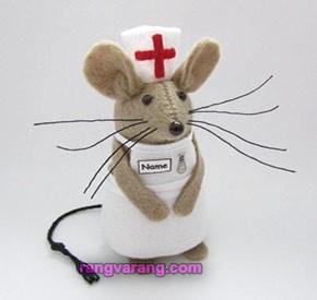 موش نمدی پرستار