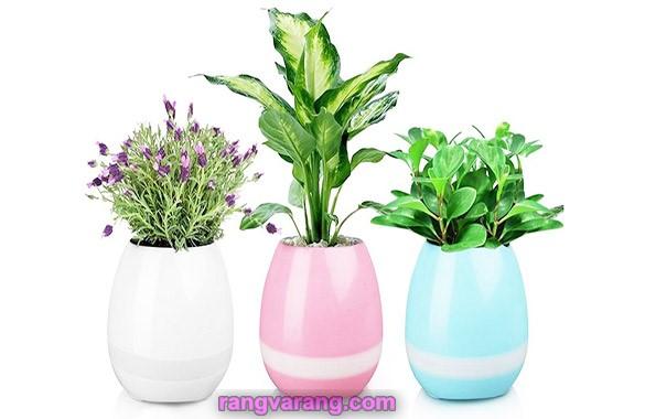 اسپیکر بلوتوثی و گلدان هوشمند Smart
